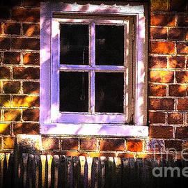 The Window in Historic Williamsburg Virginia by Ola Allen