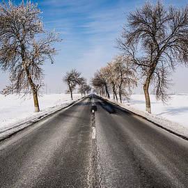 Vlad Costras - The Winter Road