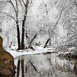 Saija  Lehtonen - The Wonders of Winter