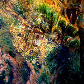 Irma BACKELANT GALLERIES - Thermal Grasses