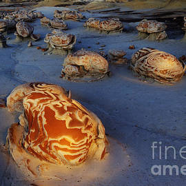 Bob Christopher - The Egg Factory  Bisti/De-Na-Zin Wilderness At Night