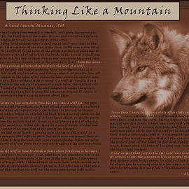 Sarah Skinner - Thinking Like a Mountain-Mexican Wolf