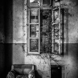 This is the way step inside II by Traven Milovich
