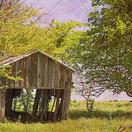 This Old Barn by Joan Carroll