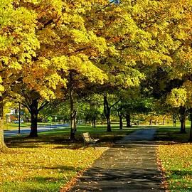 Thompson Park Ua 2014 by Beth Akerman