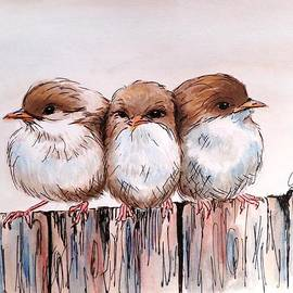 Anne Gardner - Three baby Fairy Wrens