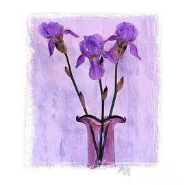 Three Purple Irises by Marsha Heiken