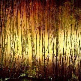 Richard Reeve - Through the Trees