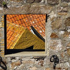 Through the Window by Inge Riis McDonald