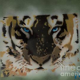 Tigerrr by Barry Boom