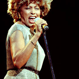 Gary Gingrich Galleries - Tina Turner - 0459