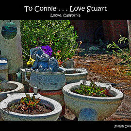 Joseph Coulombe - To Connie    Love Stuart