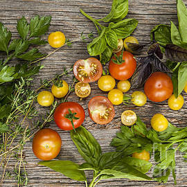 Tomatoes and herbs