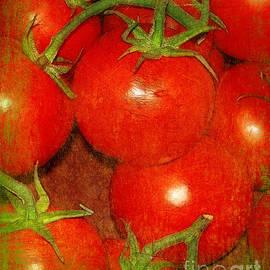 Judi Bagwell - Tomatoes on the Vine