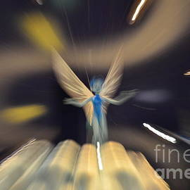 Tooth Fairy by Randy J Heath