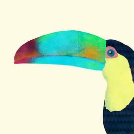 Toucan by Eric Fan
