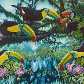 Toucan Jungle by JQ Licensing