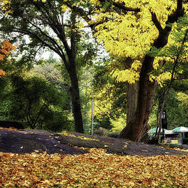 Madeline Ellis - Touched by Autumn - Central Park - NYC