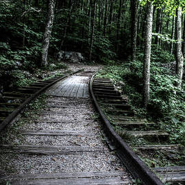 Expect a Ghost Train to come Roaring down the Tracks any Second by Doc Braham