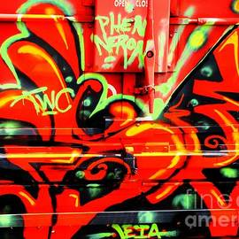 Train Graffiti by Steven Parker