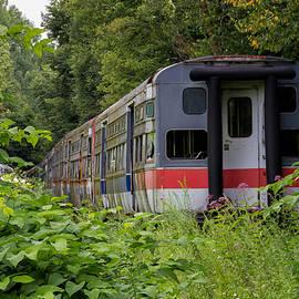 Train to Nowhere  by Marzena Grabczynska Lorenc