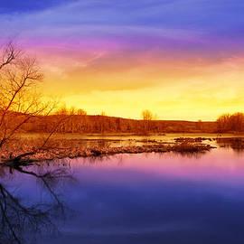 Christina Rollo - Tranquil Tree Reflection Landscape