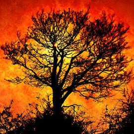 Persephone Artworks - Tree of Fire
