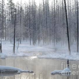 Trees Of Winter by Philip and Robbie Bracco