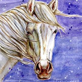 Linda L Martin - Tripod Wild Stallion of the Sand Wash Basin