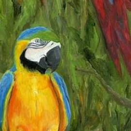 Deborah Butts - Tropical Feathers