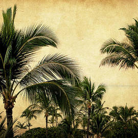 Tropical Palm Trees by Athena Mckinzie