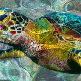 Tropical Sea Turtle by Jack Zulli
