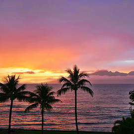 Tropical Sunset by Peggy Collins