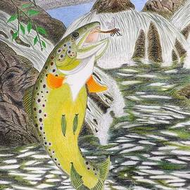 Trout Stream In May by Gerald Strine