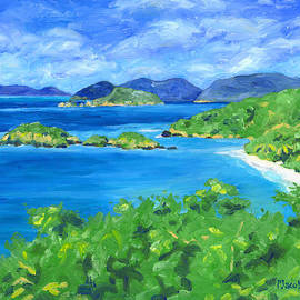 Trunk Bay by Pauline Walsh Jacobson