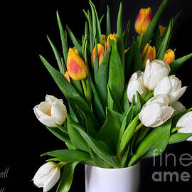 Tracy  Hall - Tulip Bouquet