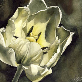 Alfred Ng - Tulip In White