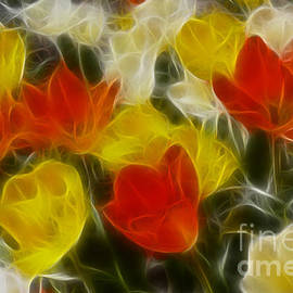 Gary Gingrich Galleries - Tulips-6589-Fractal