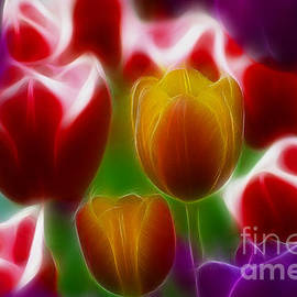 Gary Gingrich Galleries - Tulips-7028-Fractal