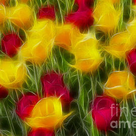 Gary Gingrich Galleries - Tulips-7106-Fractal