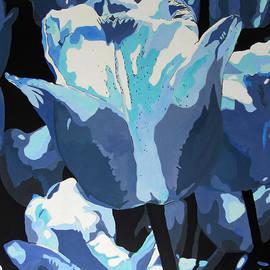 Callan Percy - Tulips Blu