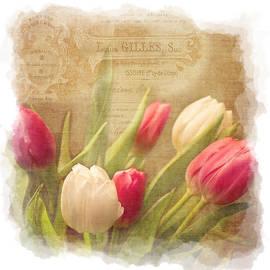 Tulips by KJ DeWaal