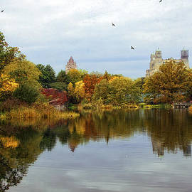 Turtle Pond - Central Park - NYC by Madeline Ellis