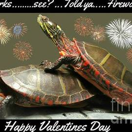 Turtles Making Fireworks Together by Crystal Loppie and John Malone