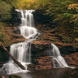 Gene Walls - Tuscarora Under Newfallen Leaves