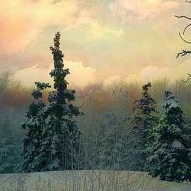 Shirley Sirois - Twilight in the Forest