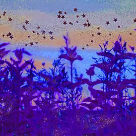 First Star Art  - Twilight Meadow Magic