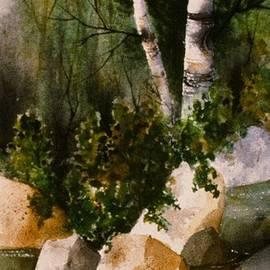 Teresa Ascone - Two Birch by Rocky Stream