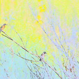 Two Birds Abstract by Kathy Barney