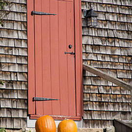 Two Pumpkins by Alana Ranney